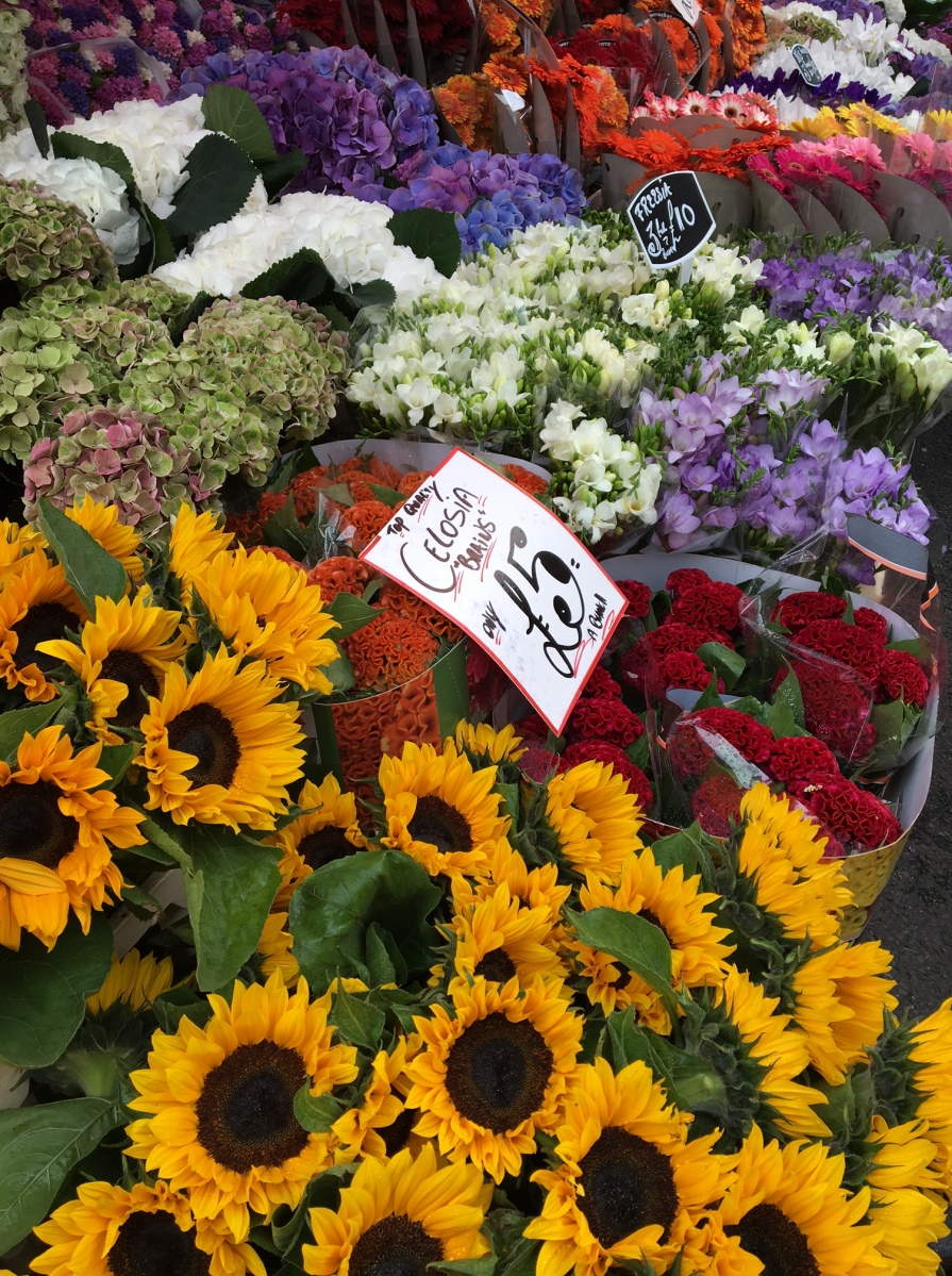 A Morning At Columbia Road Flower Market Yale Wanders